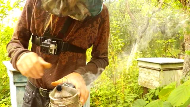 Hiver With Camera Gopro on Cheat Opens Bee Smoker Fumes Hives Forest video