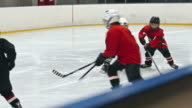 Hockey Minor League Playing Rough video