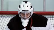 Hockey Player Goalie video