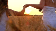 HD SUPER SLOW-MOTION: Holding Hands In Field At Sunset video