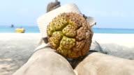 holiday at tropical beach of Phuket video