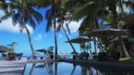 4K Holiday pool & palm trees resort video