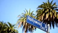 Hollywood Blvd. video