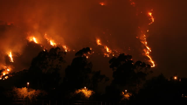 Hollywood Wild Fire B Time Lapse NTSC video