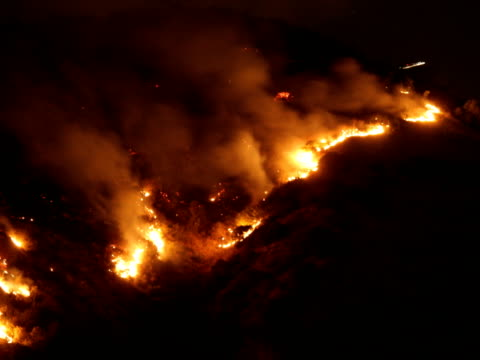 Hollywood Wild Fire C Time Lapse NTSC video