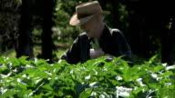 Home Farmer video
