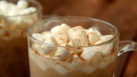 Homemade cocoa with cinnamon and baked marshmallows video