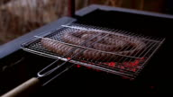 Homemade sausage is cooked on a grate video