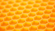 Honey comb. Abstract background. video