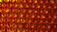 honey comb video