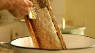Honey extracting video