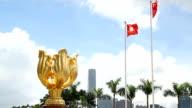 Hong Kong Golden Bauhinia Square video