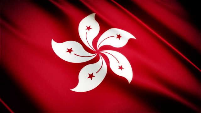 Hong Kong realistic national flag seamless looped waving animation video