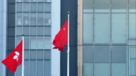 hong kong regional flag and China flag in the wind with building in hongkong video