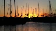 Honolulu Harbor at sunset video
