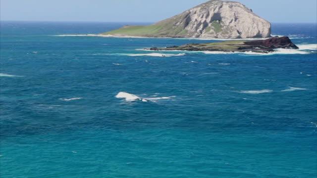 Honolulu South Eastern Coast HD video