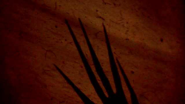 Horror Claws video