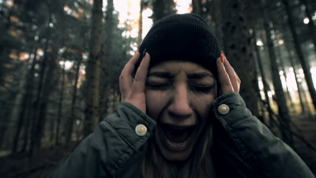 MONTAGE Horror deep in the woods video