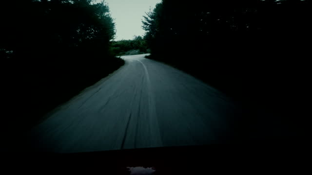 Horror scenes. Car driving fast into forest video