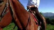 Horse and horsewoman detail with slide and wide shot video