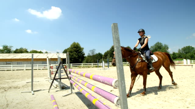 SLOW MOTION: Horse cantering in outdoor parkour arena and jumping over the fence video