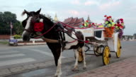 horse carriage in temple Phrathat Lampang Luang in Lampang, Thailand video
