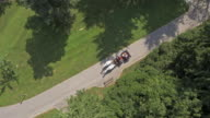 AERIAL Horse carriage pulled by two white horses video