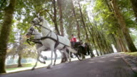 SLO MO TS Horse carriage ride through the park video