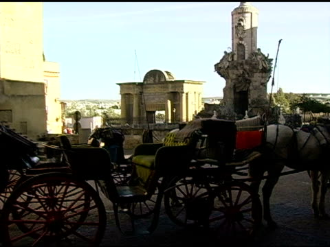 Horse Drawn carriage in front of La Mesquite Cordoba Spain video