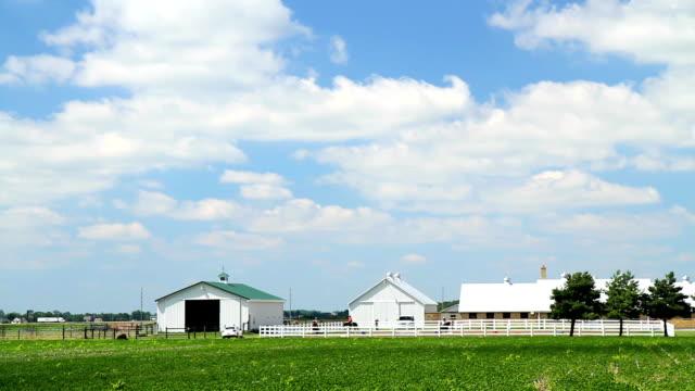 Horse farm with blue cloudy sky video