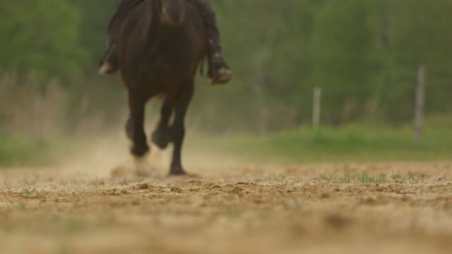 Horse, horseback rider galloping full speed with great sound video