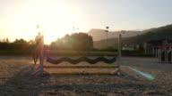 Horse jumping hurdle at sunset, video