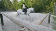 DS Horse riding practice in the longe video