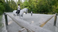 DS Horse riding practice on a longe line video