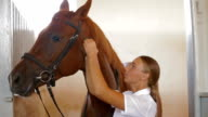 Horse Sport Training video