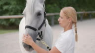 LD Horse trainer petting white horse on the nose video