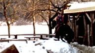 HD: Horseback Riding video