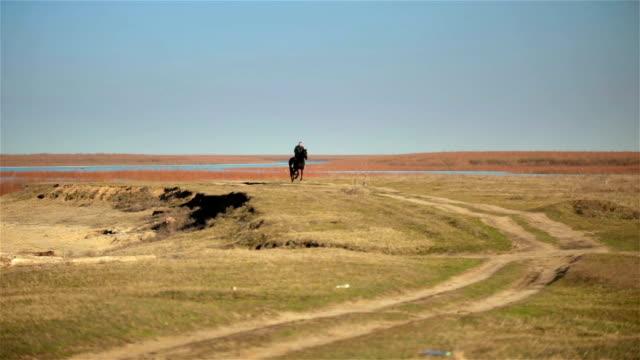 Horseman ride gallop on black horse across field in sunset video
