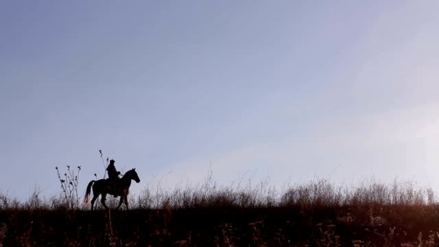Horseman. video