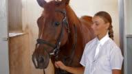 Horsewoman video