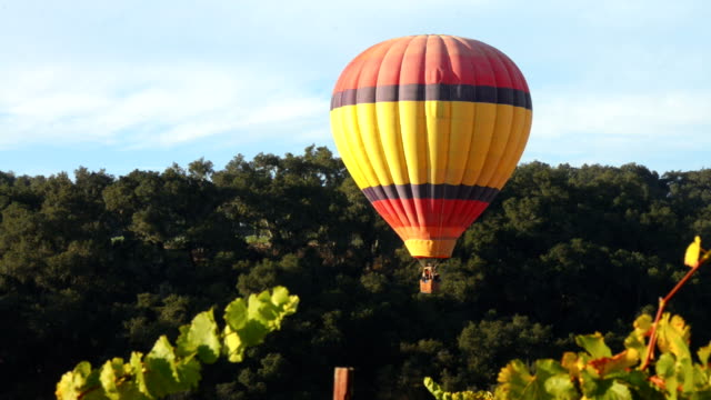 hot air balloon over wine country, Paso Robles, California video