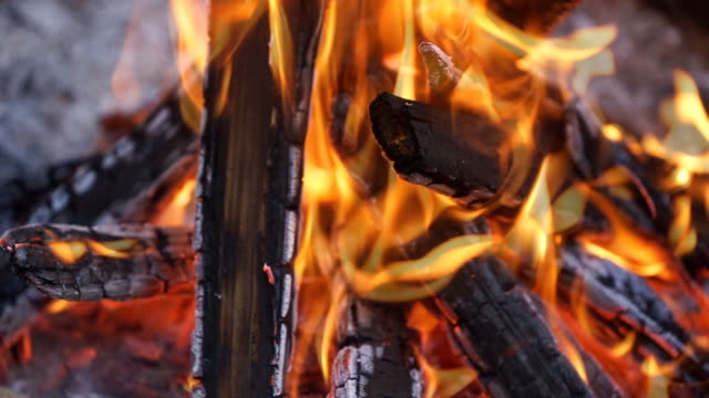 Hot fireplace full of wood with the trees crackling and  bird song sound, campfire. Camp fire, red and yellow flames and embers. video