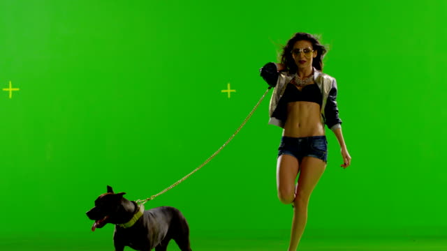 Hot girl dancing. With mad pit bull dog. With real strobe lights on body. Slow motion. Green screen. Shot on RED EPIC Cinema Camera. video