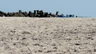 Hot Sand on Beach video