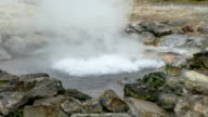 Hot Springs Geyser Closeup, Furnas, Azores, Portugal video