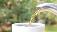 Hot Tea Pouring into White Tea Cup on Green Tree Background Close-Up View video