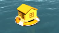 house in Lifebouy video