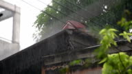 House roof in torrential rain video