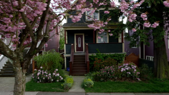 Houses Blossoms 03 video