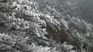 Huangshan mountain in winter,China. video